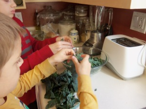 Kale Chip Recipe - SimpleLifeMom