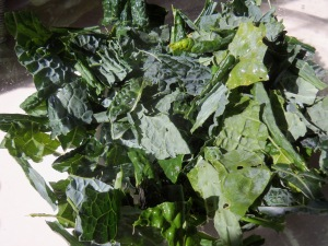 Kale Chip Recipe - Toss Kale pieces in olive oil and salt