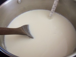 Homemade Yogurt - Simple Life Mom